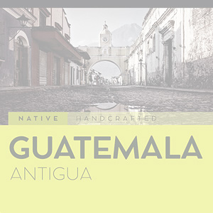 guatemala antigua whole bean coffee
